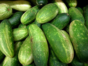 Foods During Diet - Cucumber