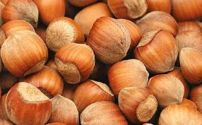 Consumption of Tree Nuts may Help You Reduce Weight